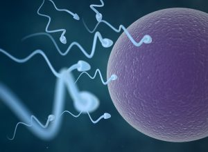 Advancements in Infertility Treatment